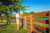 Fence staining — Stock Photo
