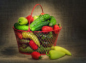 Still life with garden vegetables — Stockfoto