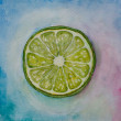 Lime watercolor — Stock Photo