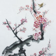 Stock Photo: Plum tree blossom