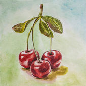 Cherry watercolor — Stock Photo