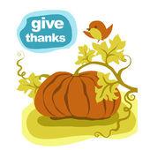 Thanksgiving pumpkin — Stock Photo