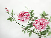 Roses asian watercolor — Stock Photo