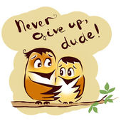 Never give up birds — Stock Photo