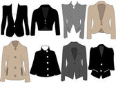 Vector illustration of different jackets for women — Stock Vector