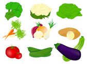 Vector illustration of different vegetables — Stock Vector