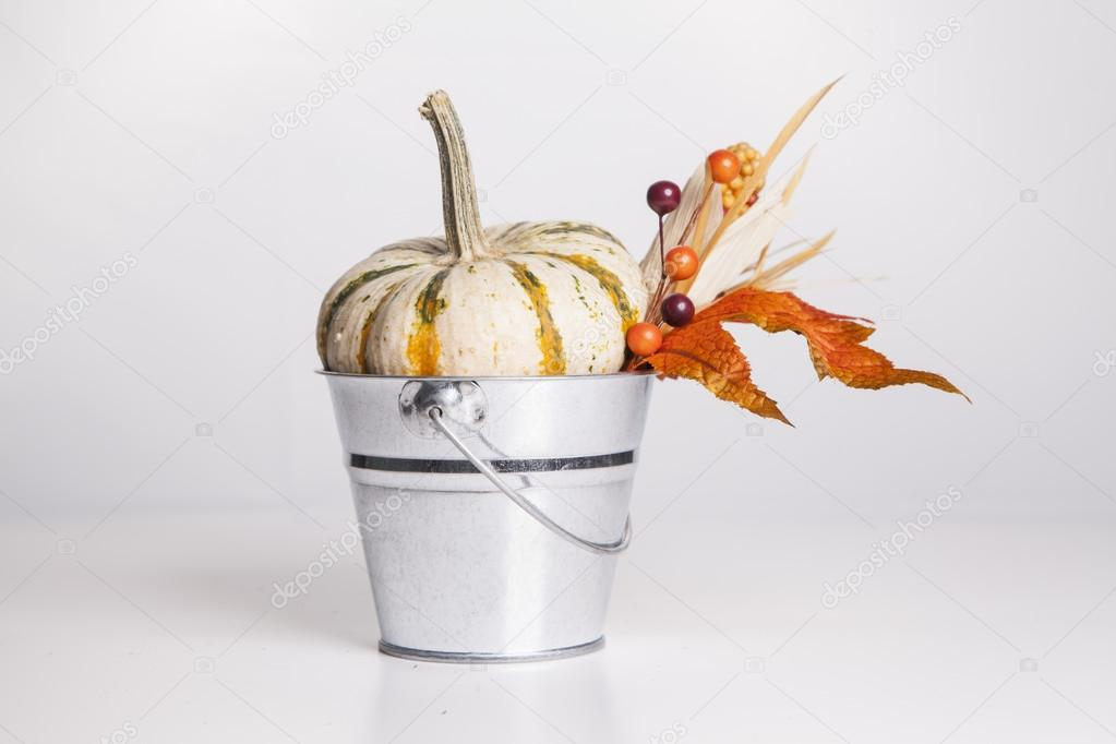 An isolated metal bucket is filled with fall decorations. — Stock Photo #13120458