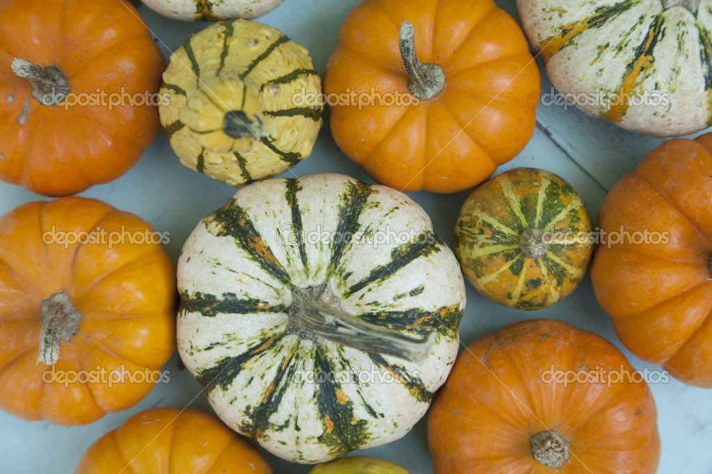 A group of colorful gourds are clustered together outside. — Stock Photo #13165512