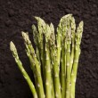 Organic Asparagus Cluster — Stock Photo