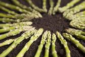 Zielone szparagi koło — Zdjęcie stockowe