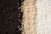 Rice and Dirt — Stock Photo