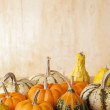 Group of Gourds — Stock Photo #13674663