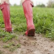 Stock Photo: Pink Rains Boots