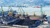 The port terminal for coal loading — Foto Stock