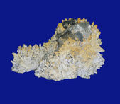 Pyrite on quartz — Stock Photo