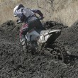 Stok fotoğraf: Motocross bike in race