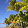 Tropical beach with volleyball net under palm trees — Stock Photo #41878059
