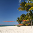 Tropical beach with volleyball net under palm trees — Stock Photo