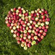 Apples on the ground in the form of heart — Stock Photo
