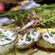 Fresh herb quark — Stock Photo #51392261