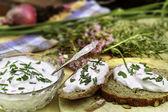 Fresh herb quark  — Stock Photo