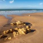 Atlantic Beach — Stock Photo #27398387