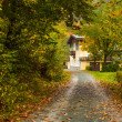 Fall in Bavaria — Stock Photo