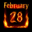 February in Calendar of Fire. Icon on black background — Stock Vector #16219969