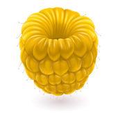 黄色いラズベリー — ストックベクタ