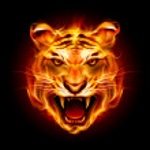 tête d'un tigre dans la flamme — Vecteur