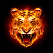 Head of a tiger in flame — Stock Vector