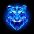 Head of fire tiger — Stock Vector #30777609