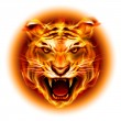 Head of fire tiger — Stock Vector