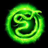 Green fire snake. — Stock Vector