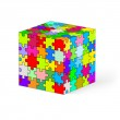 Puzzle cube. — Stock Vector #35608829