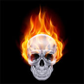 Fiery skull. — Stock Vector