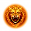 Head of fire lion. — Stock Vector #40433035