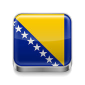 Metal  icon of Bosnia and Herzegovina — Stock Vector