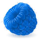 Blue raspberry over white — Stock Vector
