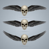 Three evil skulls with wings — Stock Vector