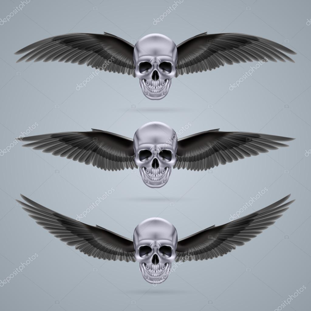有两个翅膀的三个金属铬头骨