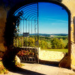 Royalty-Free Stock Photo: Old gate with nice wiev