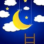 Night sky — Stock Photo #23246540