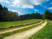 Landscape with meadows and trees — Stock Photo