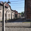 Auschwitz Birkenau German Nazi Concentration Camp - Stock Photo