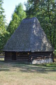 Circular wood and thatch hut in the forest — Stock Photo