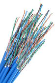 Netzwerk Kabel Cat 6 — Stockfoto