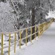 Snowy trail in park — Stock Photo #19377331
