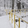 Snowy trail in park — Stock Photo #19435285