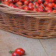 Fruits of rose hip in a wicker basket — Stock Photo